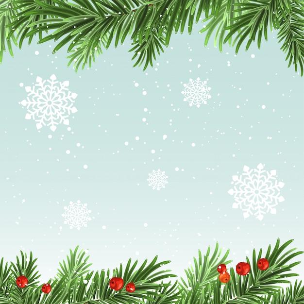Spruce branches background Premium Vector