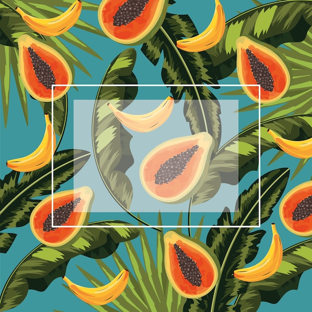 Square frame with papayas and bananas fruits and leaves Premium Vector