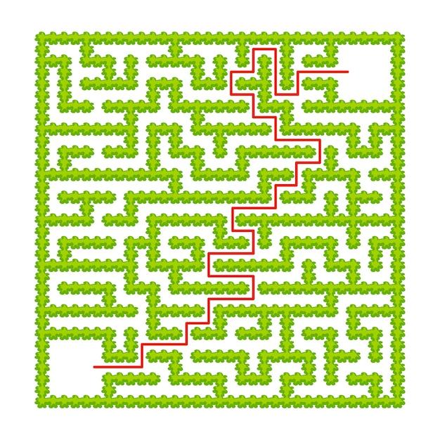 Квадратный лабиринт садовых кустов Premium векторы