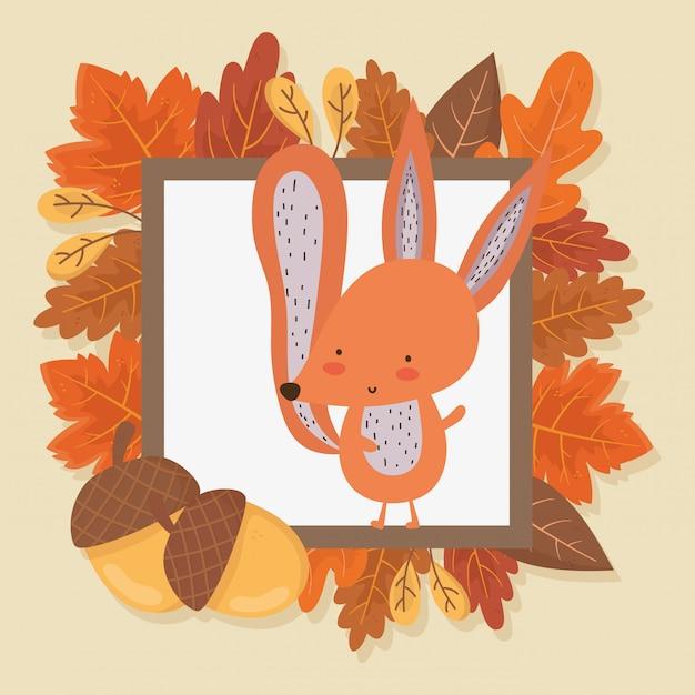 Squirrel foliage leaves hello autumn illustration Premium Vector