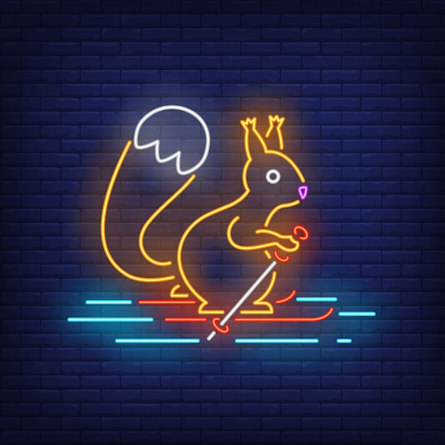 Squirrel skiing on snow in neon style Free Vector