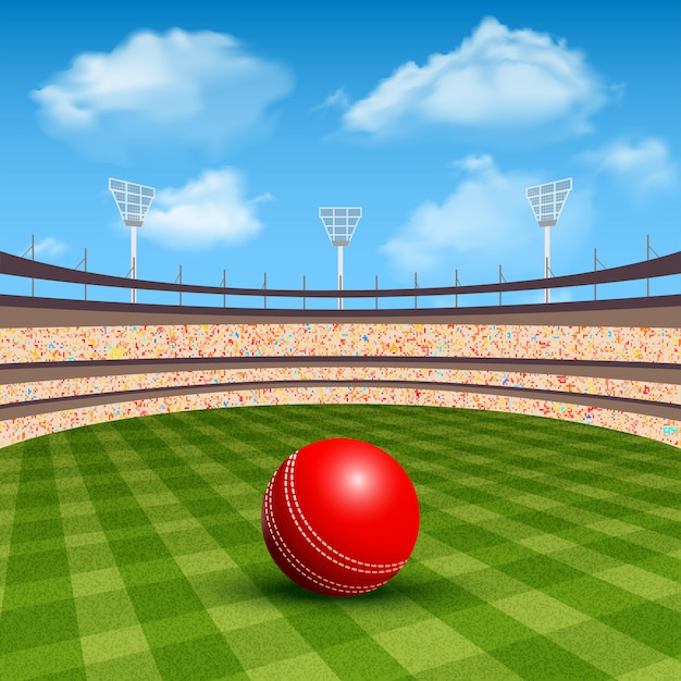 Stadium of cricket Free Vector