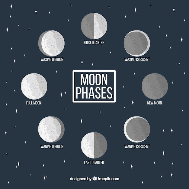 Starry background with decorative moon phases Free Vector