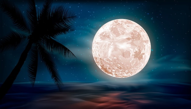 Stars in night sky, starry light, galaxy space background. night landscape background with big moon. Premium Vector