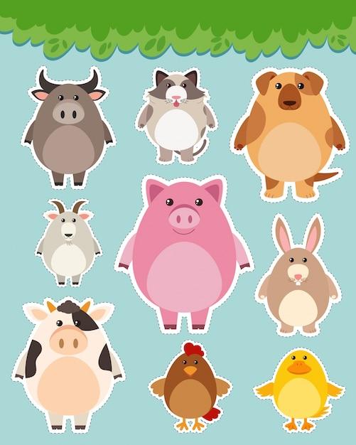 Sticker set with cute animals