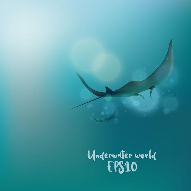The stingrays under water Premium Vector