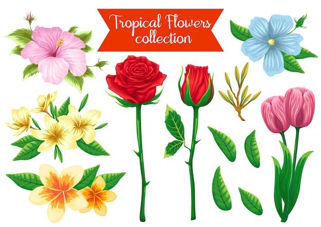Stock vector set of flowers object illustration Premium Vector