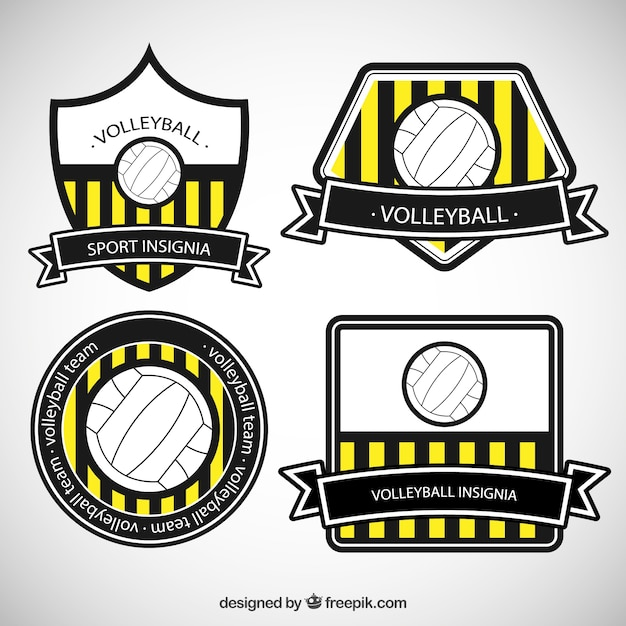 Striped volleyball badges
