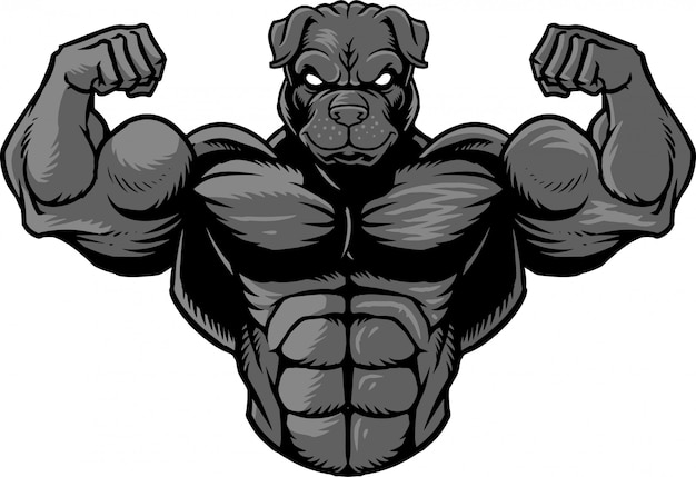 Strong bulldog 2 Premium Vector