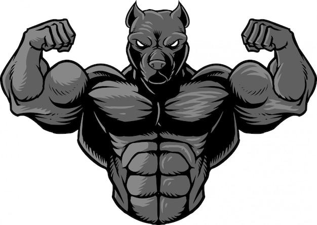 Strong pitbull 2 Premium Vector