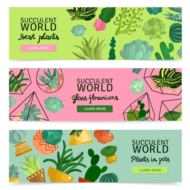 Succulents banners set Free Vector