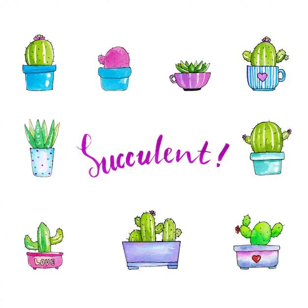 かわいいsucculentsイラスト Premiumベクター