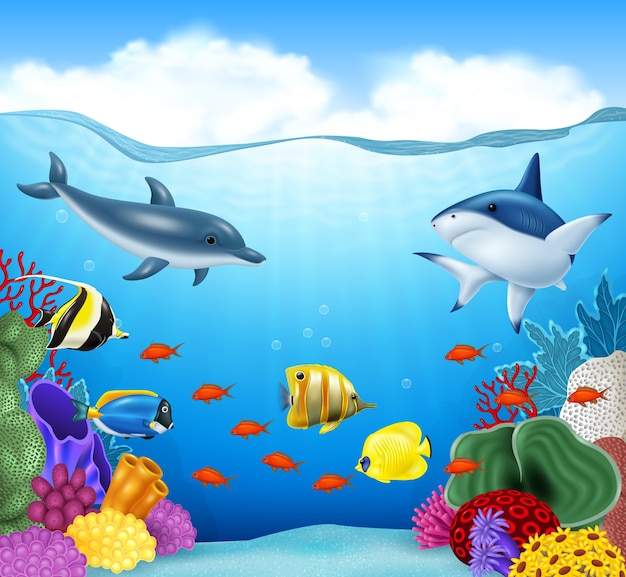 Summer background with sea animals Premium Vector