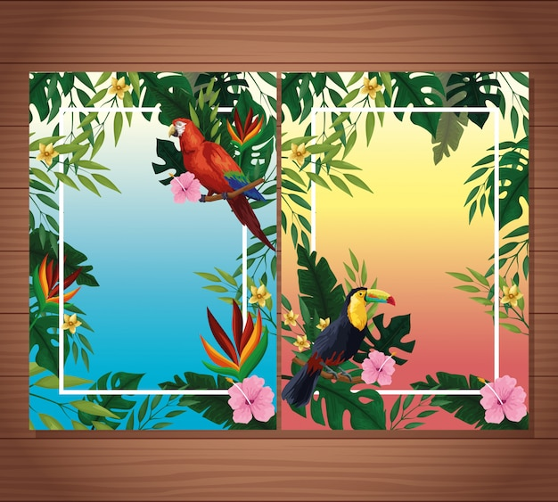 Summer blank cards with frame Free Vector
