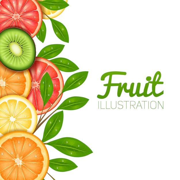 Летний фруктовый постер с нарезанным лимонно-апельсиновым грейпфрутом и киви Бесплатные векторы