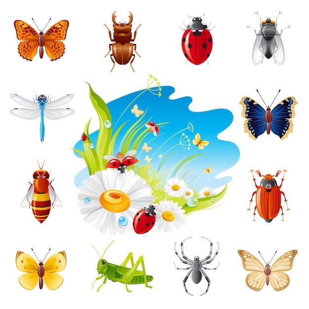 Лето насекомых икона set Premium векторы