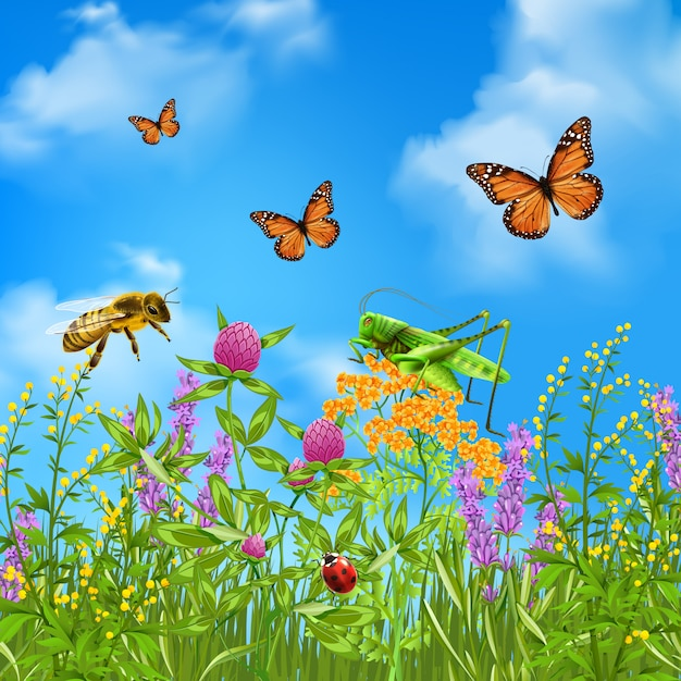 Summer insects realistic Free Vector