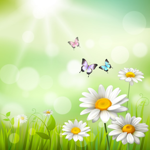 Summer meadow background Free Vector