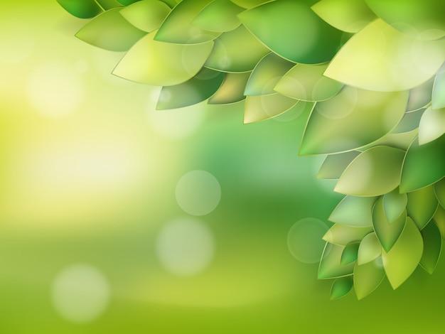 Летние природные фоны для вашего дизайна. Premium векторы