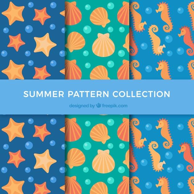 Summer patterns with marine animals