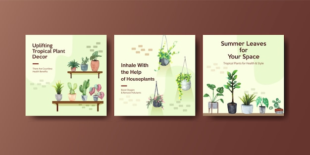 Summer plant and house plants advertise template design Free Vector