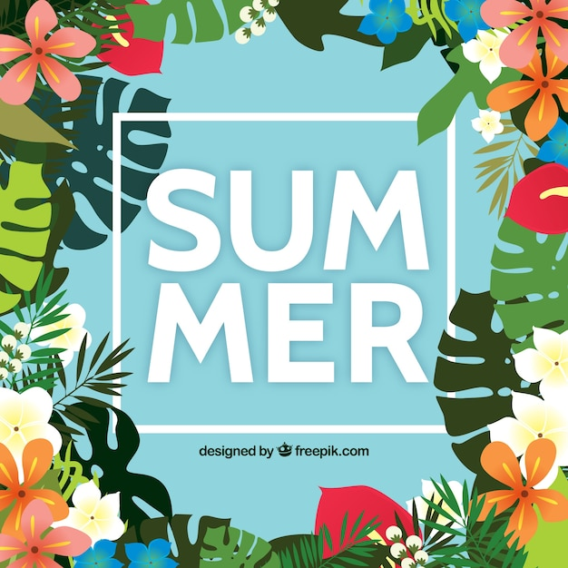 Summer tropical flowers background