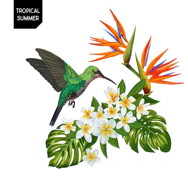 Summer tropical hummingbird and flowers Premium Vector