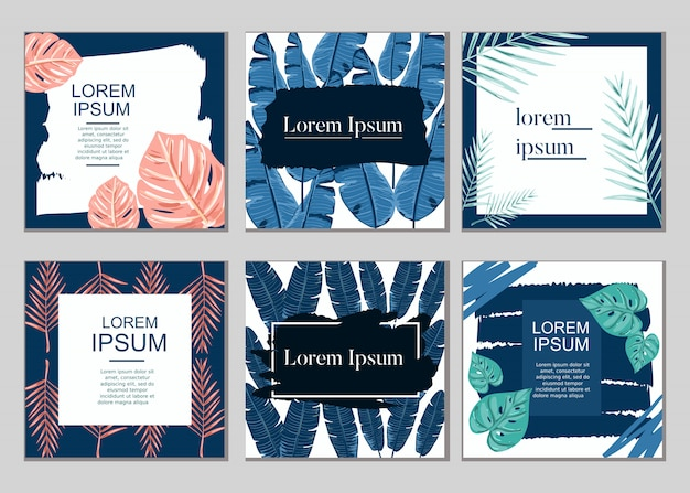 Summer tropical plant card sales design vector collection set Premium Vector