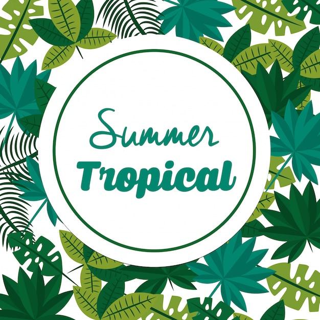 Summer tropical season Premium Vector
