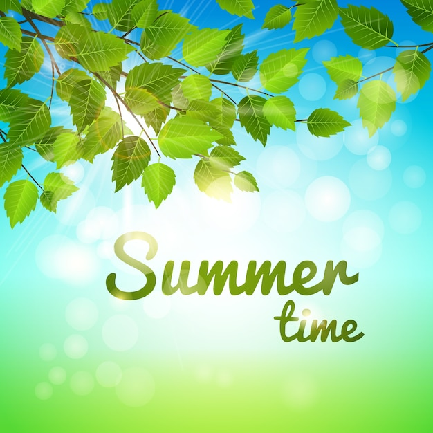 돌출 된 지점과 뜨거운 햇빛에 신선한 녹색 잎 여름 배경 무료 벡터