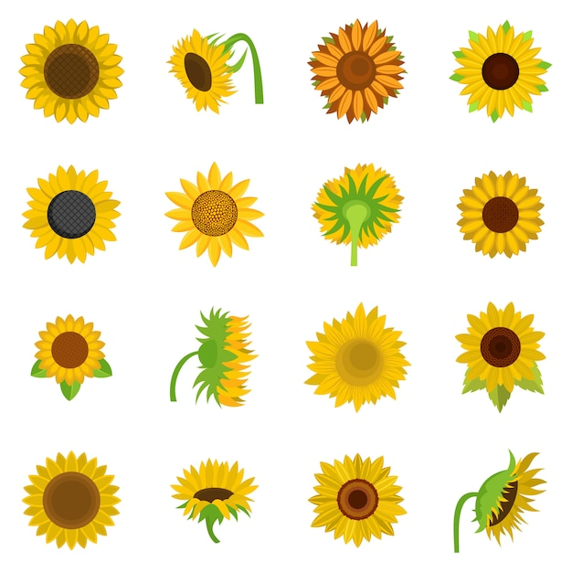 Sunflower blossom icons set vector isolated Premium Vector