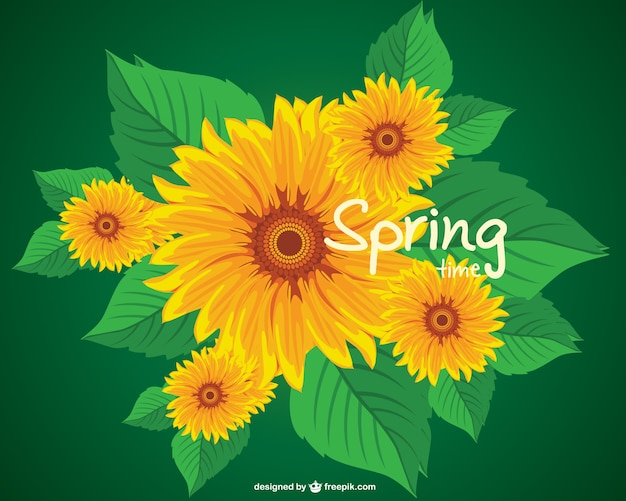 Sunflower spring vector