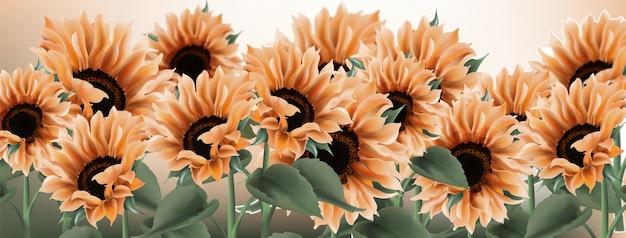 Sunflower watercolor . vintage rustic style floral decors Premium Vector