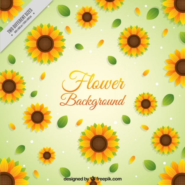 Sunflowers background in flat design
