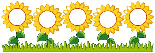Sunflowers garden with writing space Free Vector