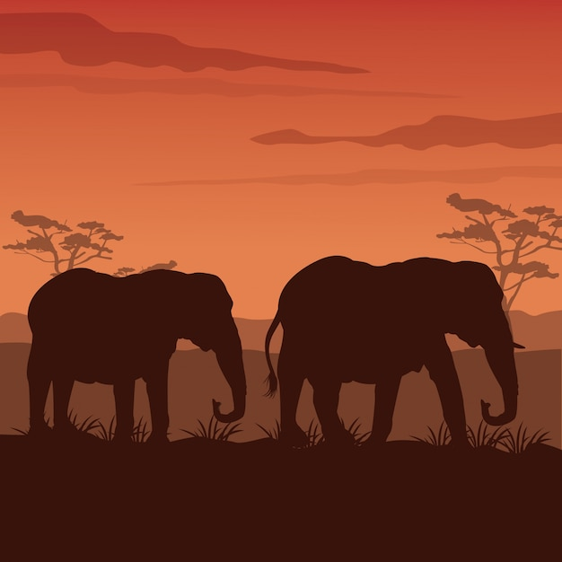Sunset african landscape with silhouette elephants walking Premium Vector