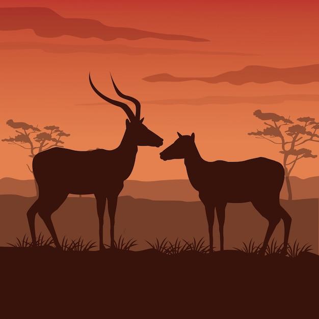 シルエットガゼル立っている日没のアフリカの風景 Premiumベクター