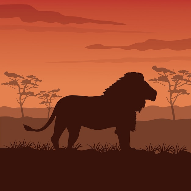 Sunset african landscape with silhouette lion standing Premium Vector