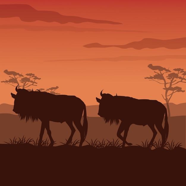 シルエットワイルドビーストの立っている日没のアフリカの風景 Premiumベクター