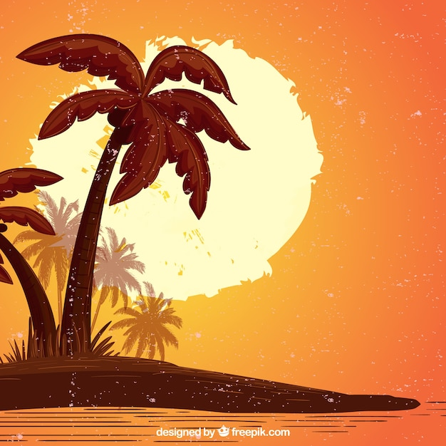 Sunset and palm tree background