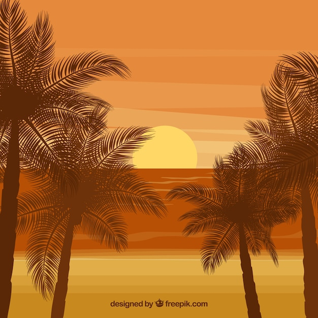 Sunset background on the beach with palm\ trees
