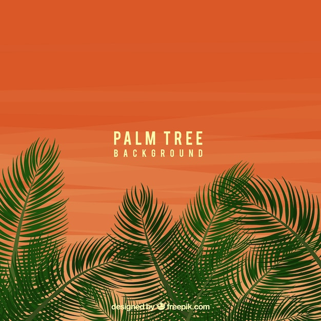 Sunset background with palm leaves