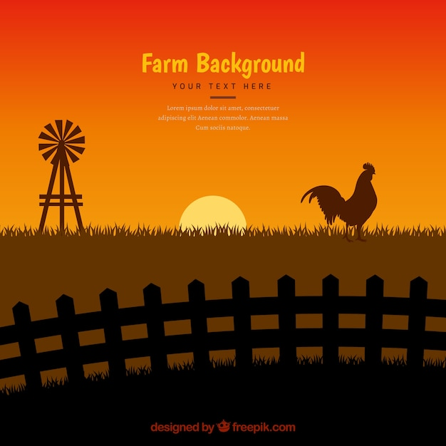 Sunset background with rooster silhouette Free Vector