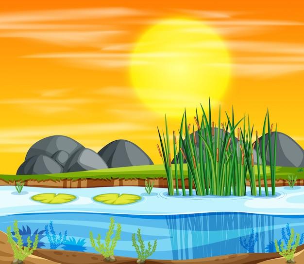Sunset pond background scene Free Vector
