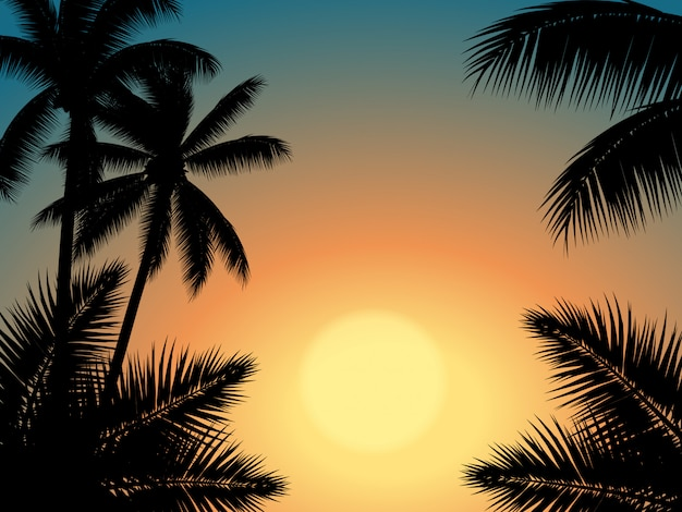 Sunset sky with palm tree silhouette Premium Vector