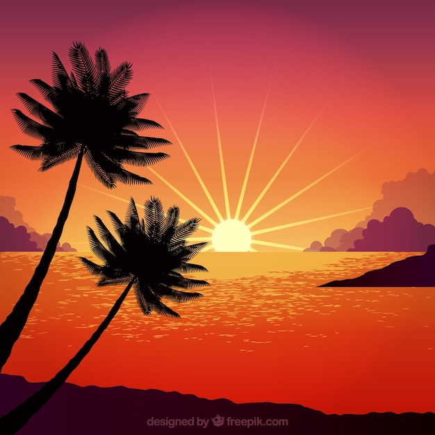 Sunset with palm tree design