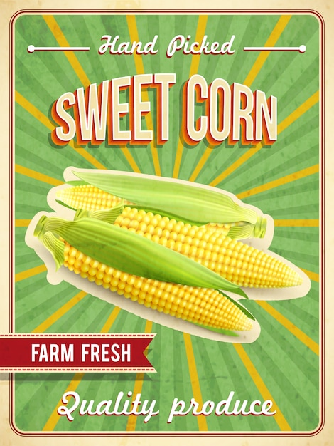 Sweet corn poster Free Vector