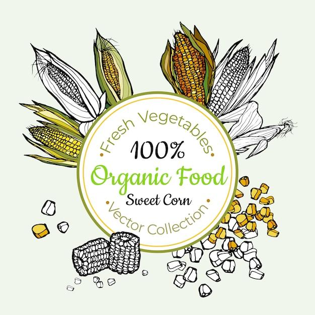 Sweet corn vegetable groceries vintage label Premium Vector