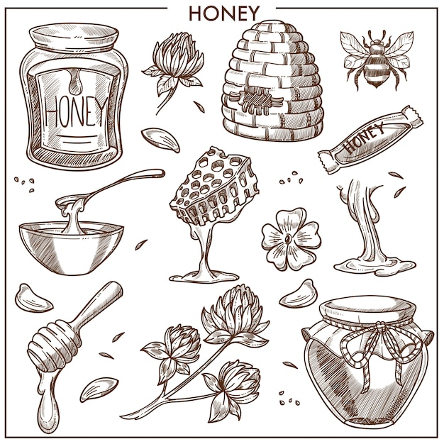 Sweet honey product collection Premium Vector