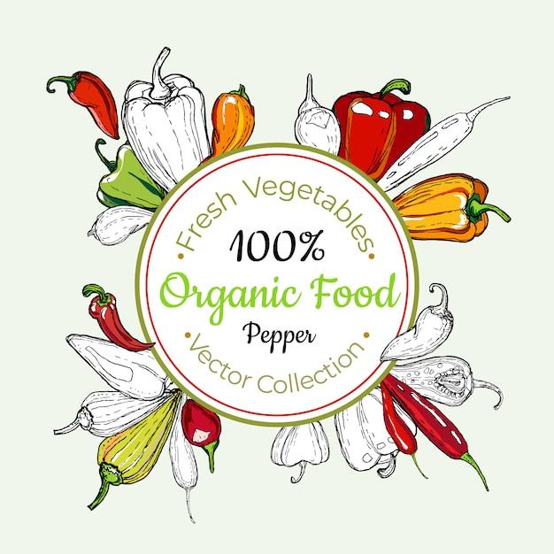 Sweet pepper vegetable groceries vintage vector sticker, poster, label template. hipster fresh food line hand drawn illustration. Premium Vector